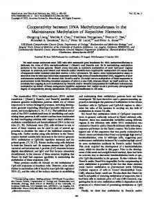 Cooperativity between DNA Methyltransferases in the Maintenance ...