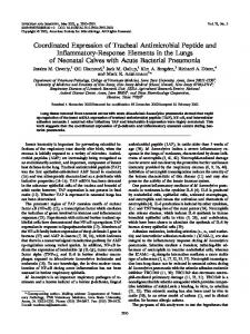 Coordinated Expression of Tracheal Antimicrobial Peptide and ...