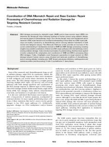 Coordination of DNA Mismatch Repair and Base Excision Repair ...