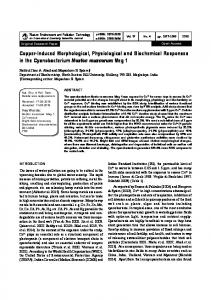 Copper-Induced Morphological, Physiological and Biochemical