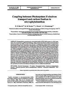 Coupling between Photosystem II electron transport and carbon ...