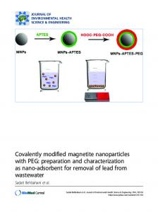 Covalently modified magnetite nanoparticles with