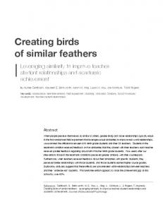 Creating Birds of Similar Feathers_Roger Edit - Alief ISD