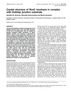Crystal structure of RuvC resolvase in complex with Holliday junction ...