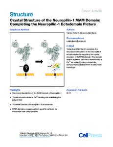 Crystal Structure of the Neuropilin-1 MAM Domain: Completing the ...