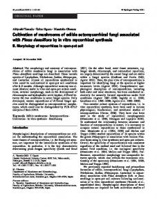 Cultivation of mushrooms of edible ectomycorrhizal ... - Springer Link
