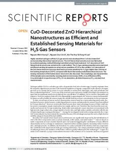 CuO-Decorated ZnO Hierarchical Nanostructures