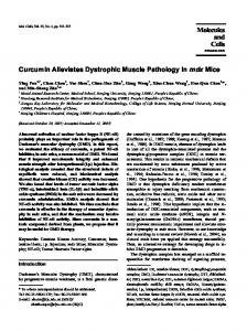 Curcumin Alleviates Dystrophic Muscle Pathology in mdx Mice