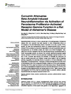Curcumin Attenuates Beta-Amyloid-Induced ... - Semantic Scholar