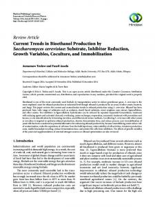 Current Trends in Bioethanol Production by Saccharomyces ...