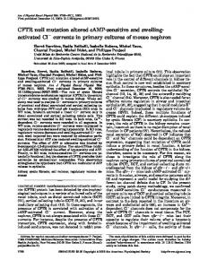 currents in primary cultures of mouse nephron - American Journal of ...