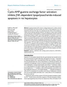 cyclic AMP-guanine exchange factor activation