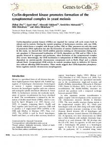 Cyclindependent kinase promotes formation of ... - Wiley Online Library