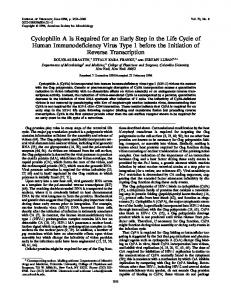 Cyclophilin A Is Required for an Early Step in the ... - Journal of Virology