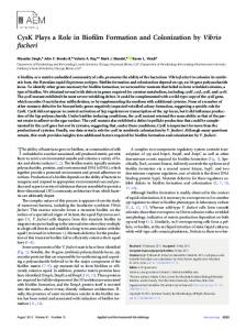 CysK Plays a Role in Biofilm Formation and Colonization by Vibrio ...