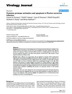 Cysteine protease activation and apoptosis in Murine norovirus infection