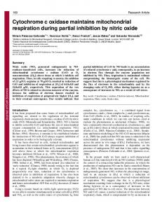 Cytochrome c oxidase maintains mitochondrial respiration during ...