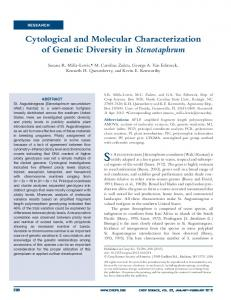 Cytological and Molecular Characterization of Genetic ...