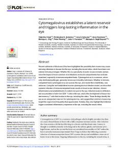 Cytomegalovirus establishes a latent reservoir and