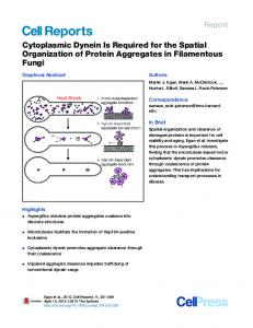 Cytoplasmic Dynein Is Required for the Spatial ... - Cell Press