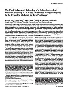 Cytosol Is Mediated by Two Peptidases Class I-Restricted Antigenic ...