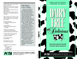 DAIRY FREE booklet