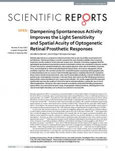 Dampening Spontaneous Activity Improves the ... - Semantic Scholar