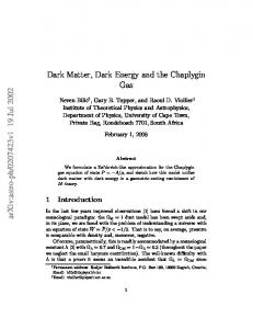 Dark Matter, Dark Energy and the Chaplygin Gas