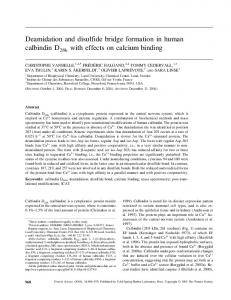 Deamidation and disulfide bridge formation in ... - Wiley Online Library