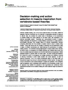 Decision-making and action selection in insects - Semantic Scholar