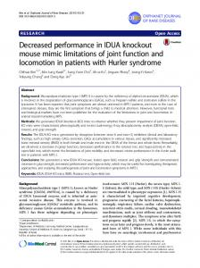 Decreased performance in IDUA knockout mouse mimic limitations of ...
