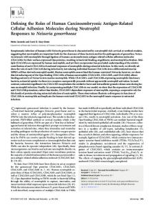 Defining the Roles of Human Carcinoembryonic Antigen-Related ...