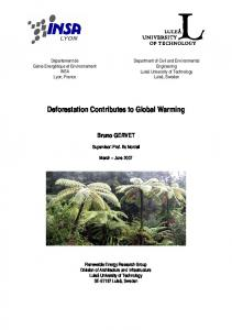Deforestation Contributes to Global Warming