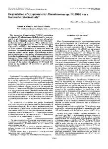 Degradation of Glyphosate by Pseudomonas sp. PG2982 via a ...