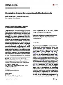 Degradation of magnetite nanoparticles in biomimetic ...