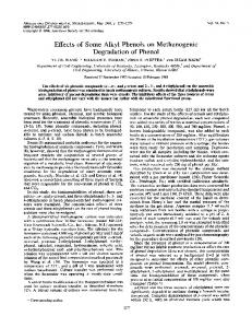 Degradation of Phenol - Applied and Environmental Microbiology