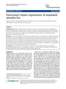 Denervation impairs regeneration of amputated ... - Springer Link