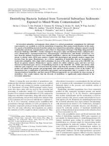Denitrifying Bacteria Isolated from Terrestrial Subsurface ... - ENVIS