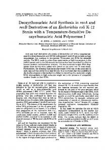 Deoxyribonucleic Acid Synthesis in recA and recB Derivatives of an ...
