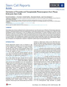 Derivation of Traceable and Transplantable Photoreceptors from ...