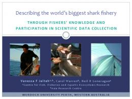 Describing*the*world's*biggest*shark*fishery