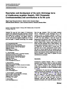 Description and development of the early third-stage larva of ...