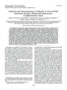 Detection and Characterization of Inffuenza A Virus PA-PB2 ...