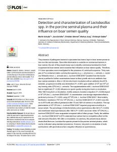 Detection and characterization of Lactobacillus spp. in the ... - PLOS