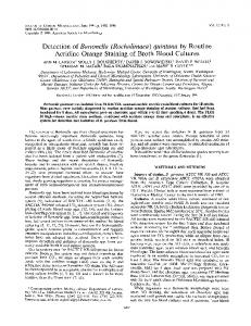 Detection of Bartonella (Rochalimaea) - Journal of Clinical Microbiology