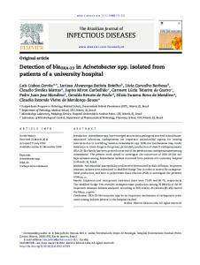 Detection of blaOXA-23 in Acinetobacter spp. isolated from ... - SciELO