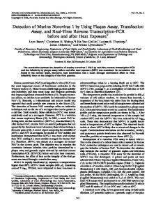 Detection of Murine Norovirus 1 by Using Plaque Assay, Transfection ...
