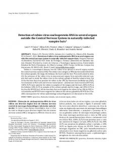 Detection of rabies virus nucleoprotein-RNA in several organs outside ...
