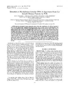 Detection of Rochalimaea henselae DNA in Specimens from Cat