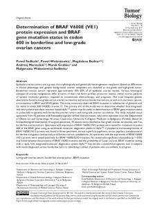 Determination of BRAF V600E (VE1) protein expression and BRAF